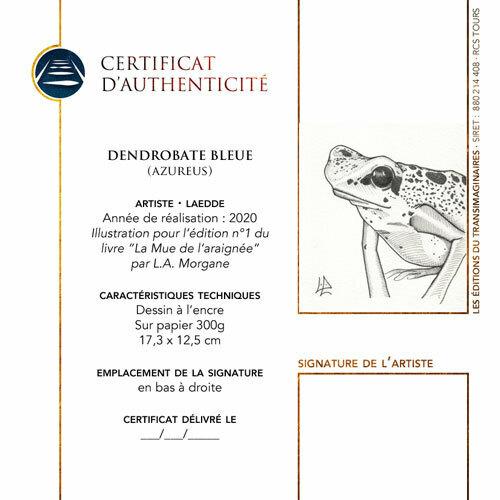"""""""Dendrobate Bleue"""" pour La Mue de l'araignée par L.A. Morgane, illustration de Laedde"""