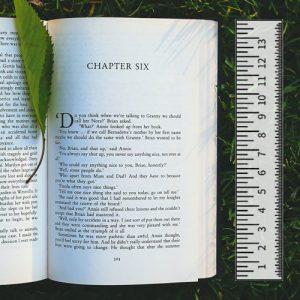 Quelle longueur pour mes chapitres